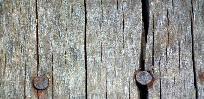 nail-199603_960_720